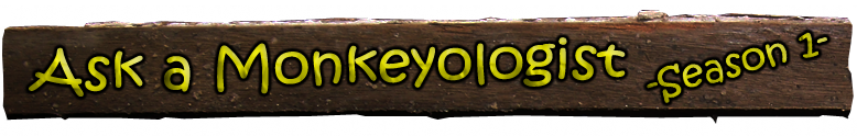 Ask a Monkeyologist - Season 1 Title