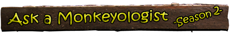 Ask a Monkeyologist - Season 2 Title
