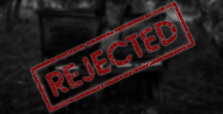 Rejected Article SilverWolfPet How to Deal With Understand Rejection Denial Denied