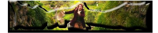 The Hobbit an unexpected journey SilverWolfPet